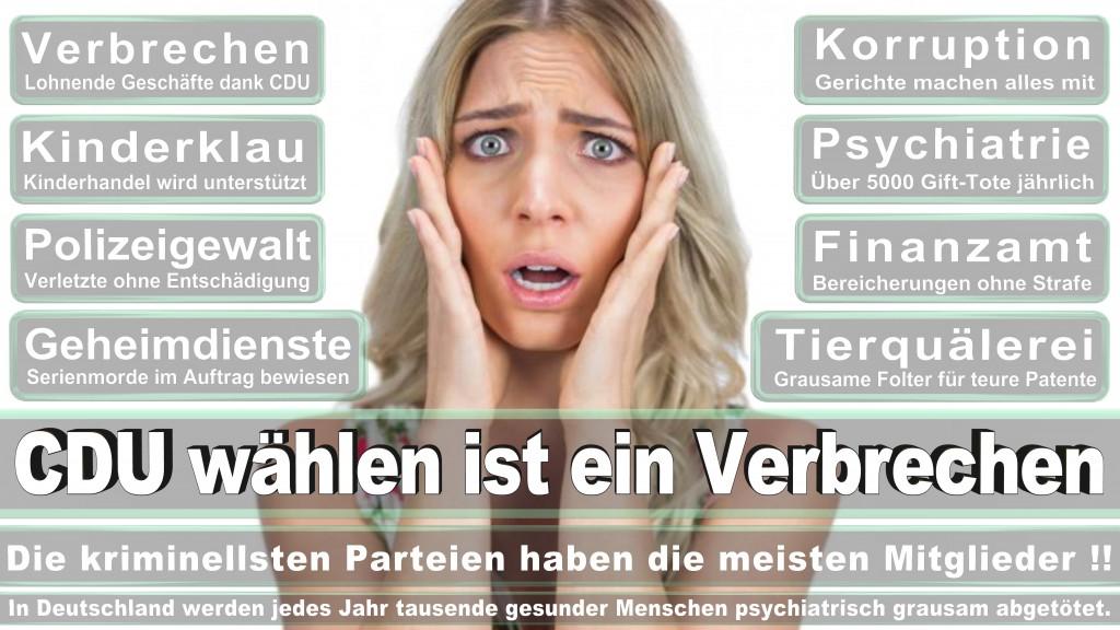 Landtagswahl-Rheinland-Pfalz-2016 (373)