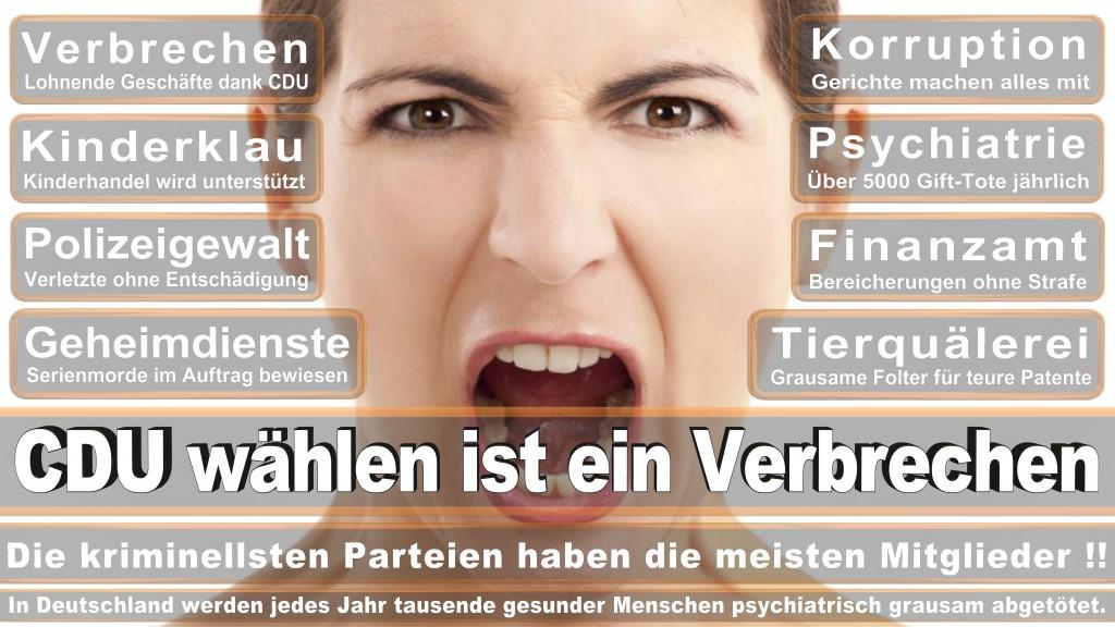 Gewohnheitsverbrecherei Tyrannenmord Landtagswahl Rheinland-Pfalz 2016 CDU SPD FDP AfD B�ndnis 90 die Gr�nen Die Linke Piratenpartei