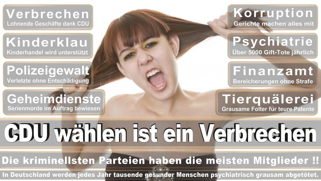 landtagswahl Rheinland-Pfalz 2016 CDU SPD FDP AfD Bündnis 90 die Grünen Die Linke Piratenpartei