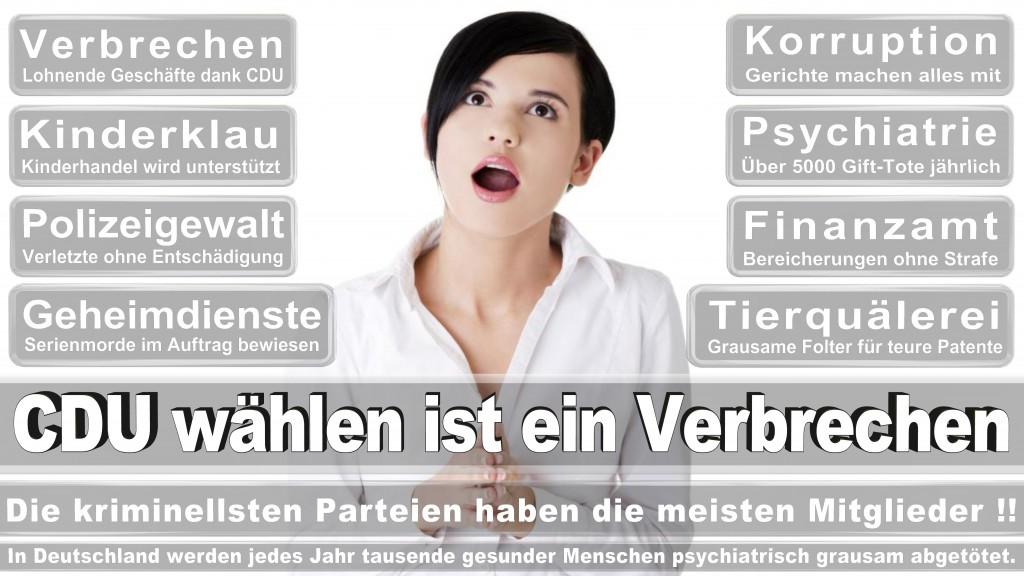 Gewohnheitsverbrecherei Tyrannenmord Landtagswahl Rheinland-Pfalz 2016 CDU SPD FDP AfD Bündnis 90 die Grünen Die Linke Piratenpartei